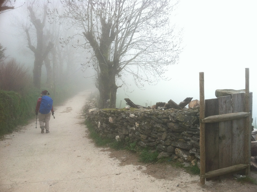 Francine in the Mists of Galicia