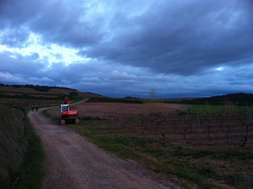 La Rioja: Somewhere West of Ventosa, Early Morning